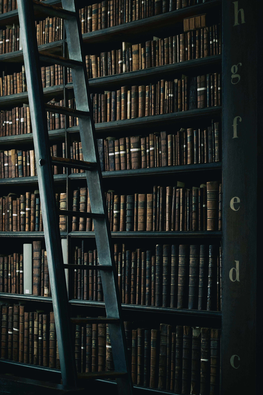 Ce cărți lansează editurile europene în 2019